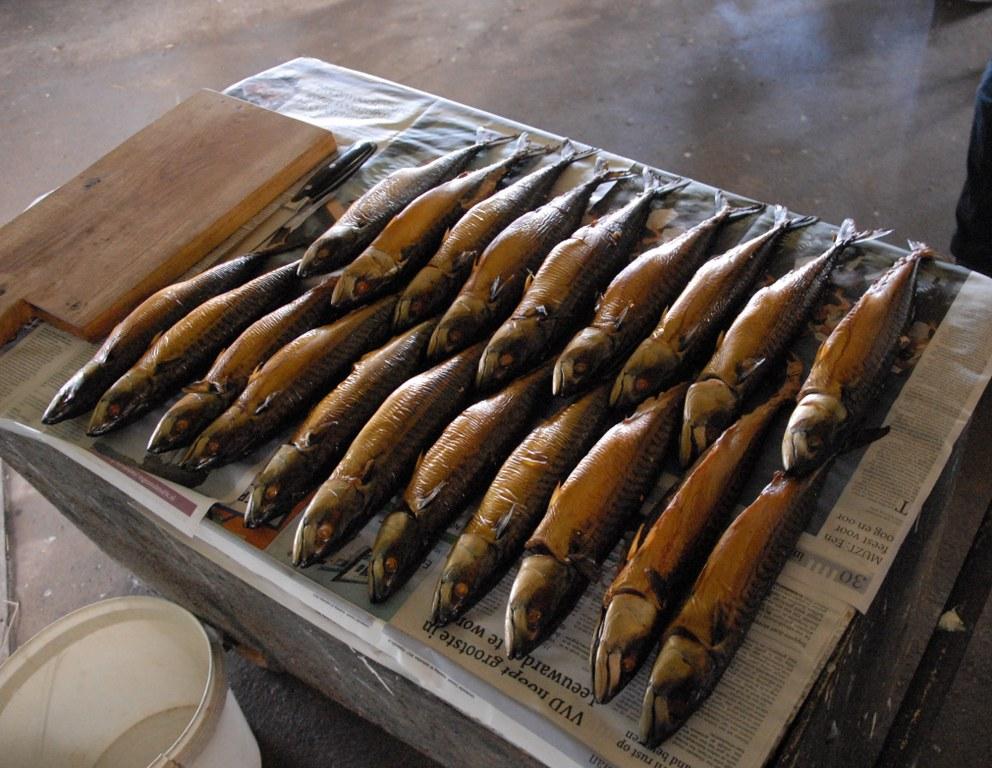 2017-10-14 15.46.25 pic makreel - kopie